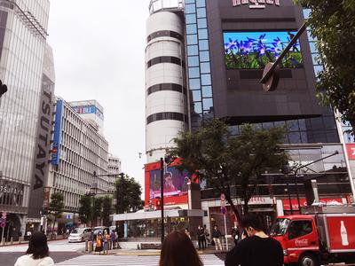 200702-sibuya.jpg